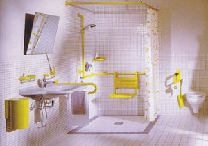 Bathroom Design For Mother In Law Suites