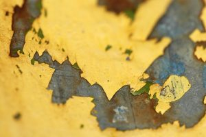 Home remodeling: lead paint mold and asbestos