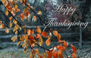 thanksgiving history and meaning