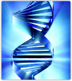 Is Alzheimers Hereditary?
